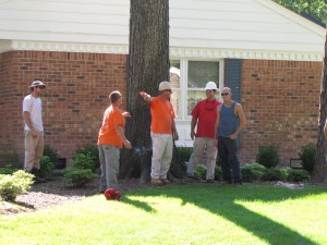 2009-06-12-tree-removal-004