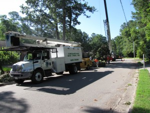 2009-06-12-tree-removal-014
