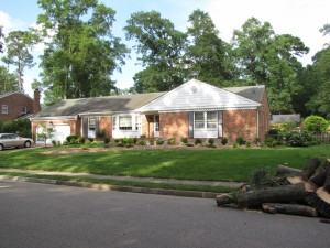 2009-06-12-tree-removal-069